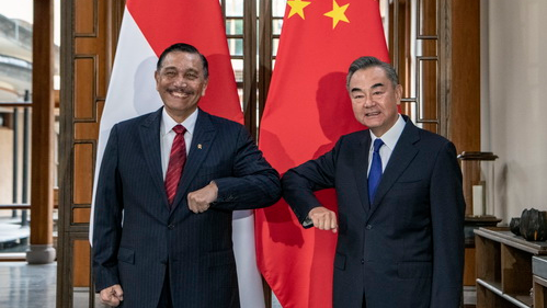 China, Indonesia to enhance COVID-19 vaccine cooperation - CGTN