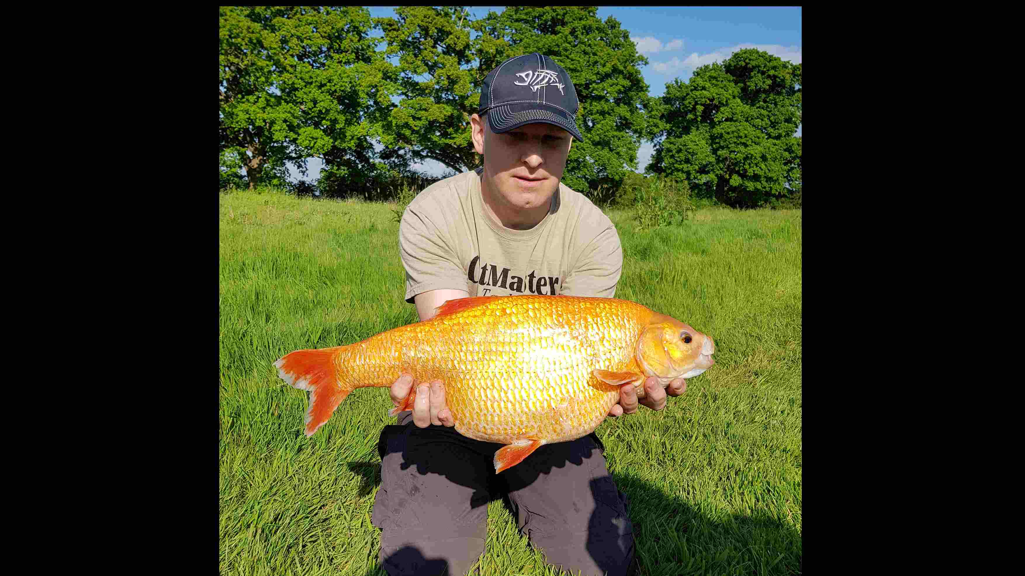 Lucky angler strikes a huge golden fish in south London - CGTN