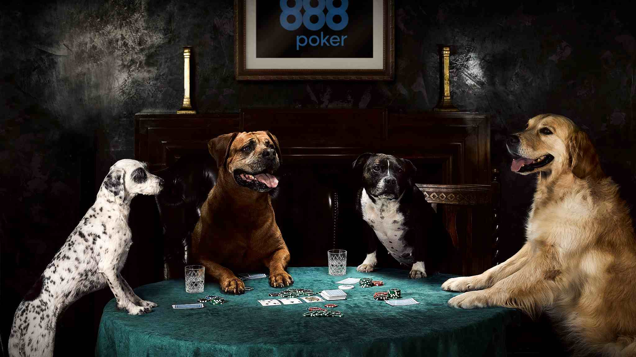 Online Poker Company Recreates Dogs Playing Poker Painting Cgtn