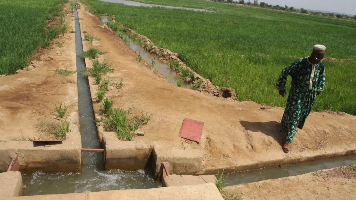 In rain-short Mali, villagers enlist irrigation to ward off extremism