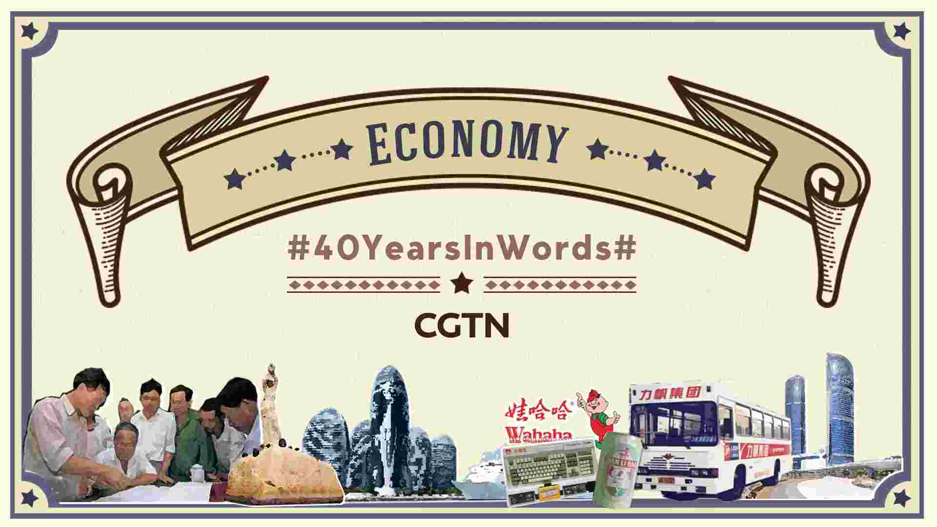40 Years in Words: Economic development from reform - CGTN