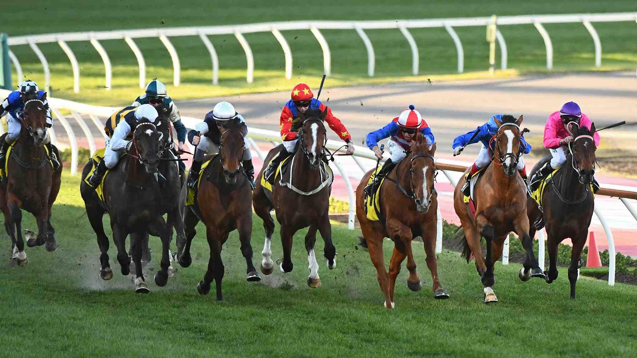 Horse racing in Hainan – China's own Kentucky Derby - CGTN