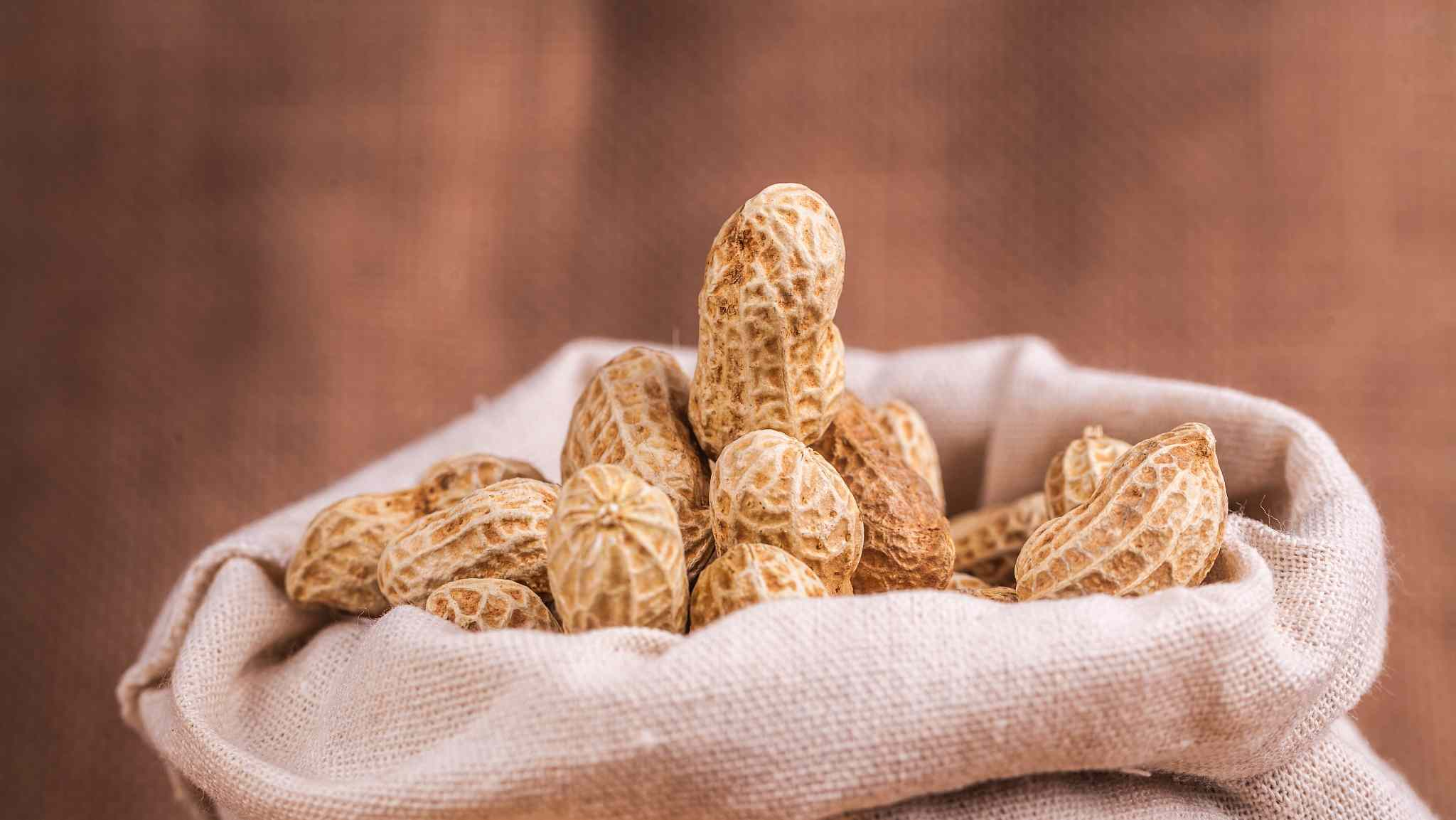 Quick Quiz: Which country is the largest peanut importer of Senegal