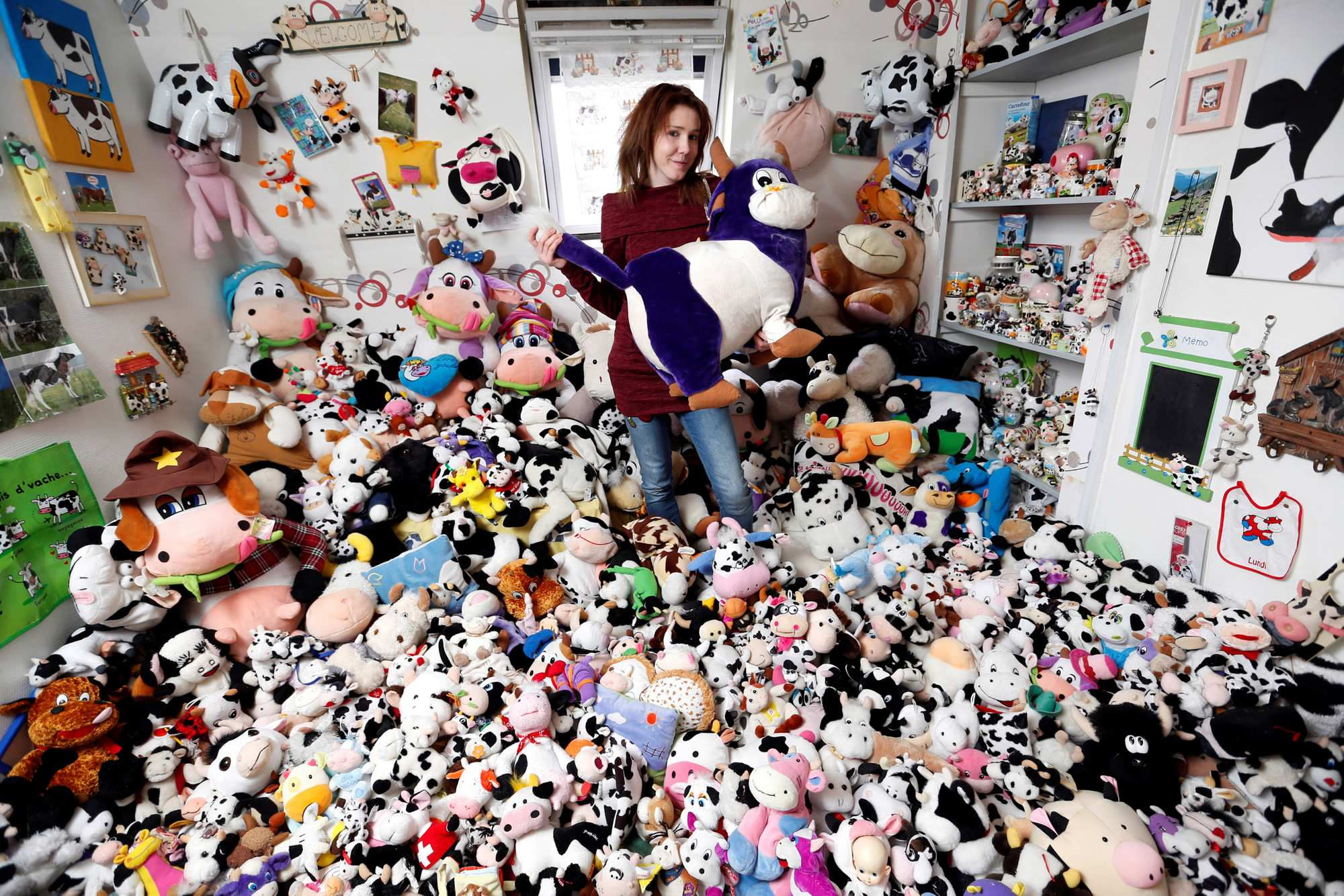 french model collects 1 679 stuffed toy cows cgtn. Black Bedroom Furniture Sets. Home Design Ideas