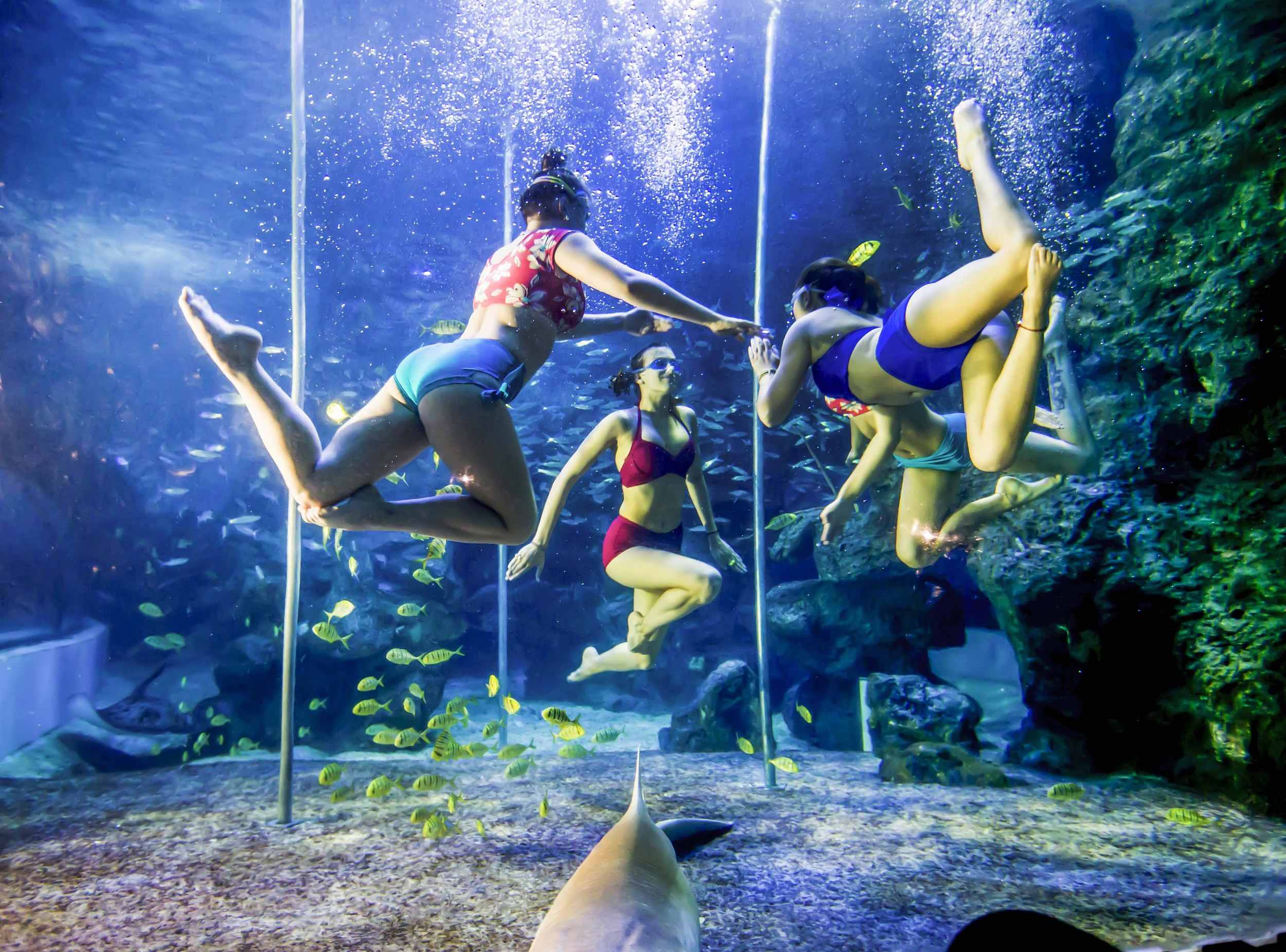 Image result for underwater dance club