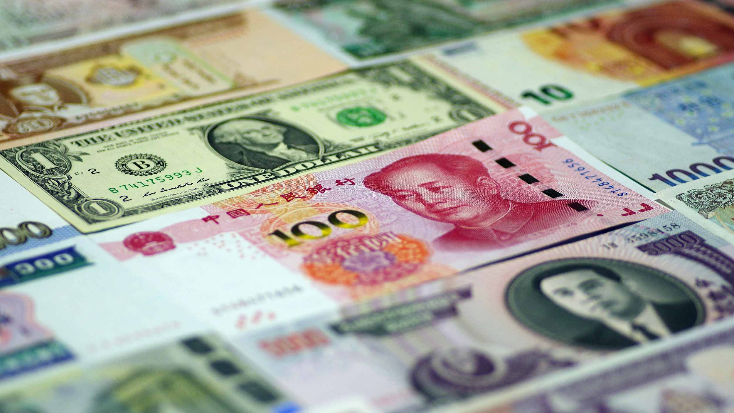 reserve currency The next closest reserve currency is the euro only 318% of known central bank foreign currency reserves were in euros as of the second quarter 2016 the chance of the euro becoming a world currency increase as the eurozone crisis fades.